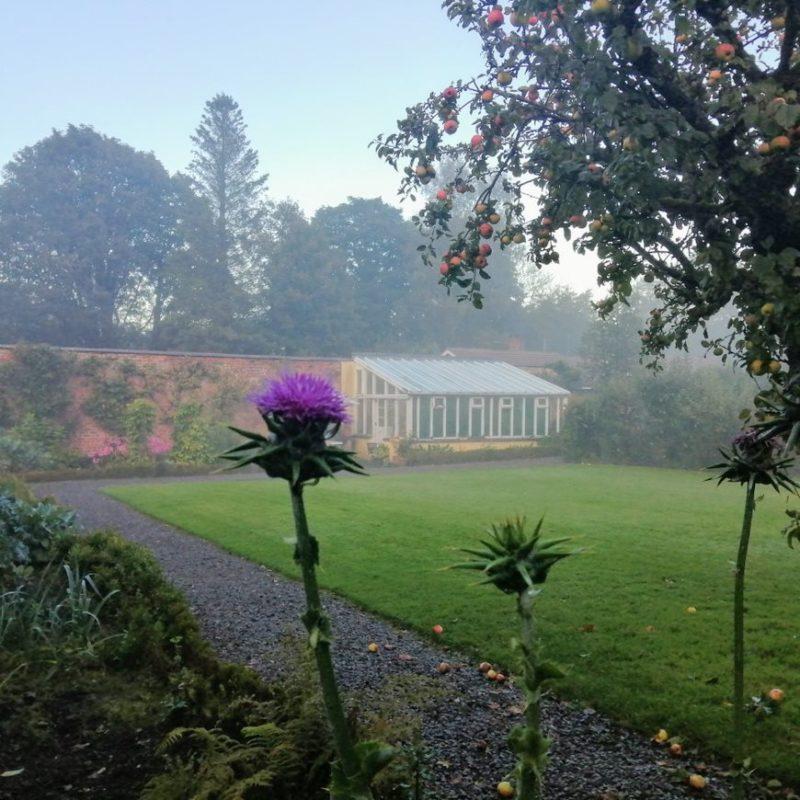 Hidden Huntley autumn mist