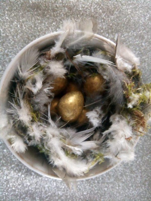 Huntley bird's nest