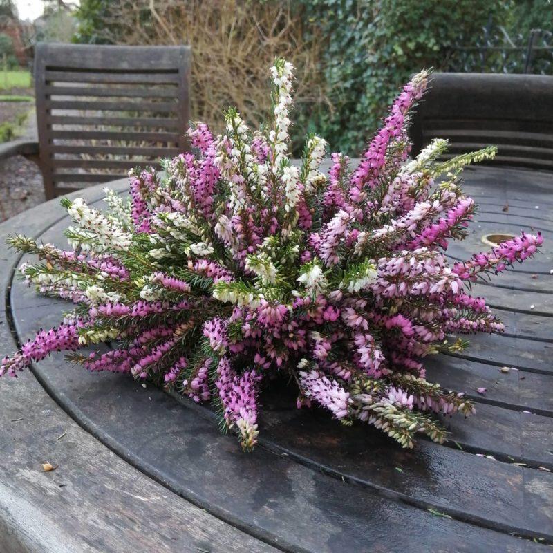 Huntley Spring