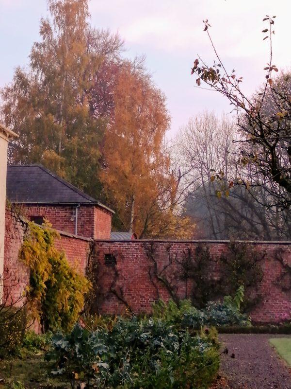Huntley Autumn