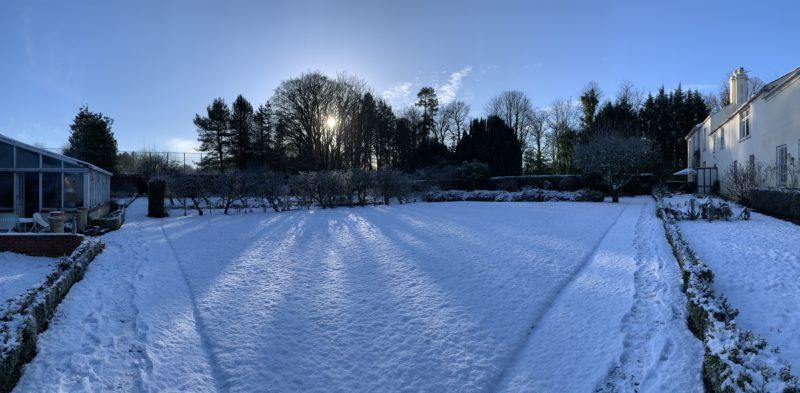 Snow garden Belfast
